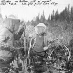 "Swannell survey; ""Muskeg, no bottom with 9' picket traverse tp.13. 200 yards from lake edge"""